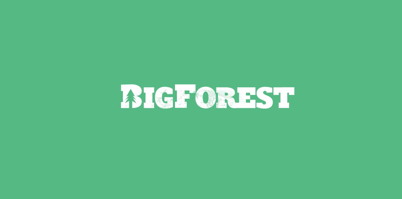big forest logo